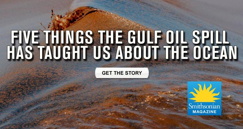 Five Things The Gulf Oil Spill Has Taught Us About the Ocean