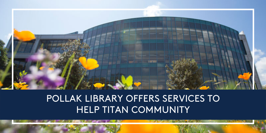 library-research-services-ebooks