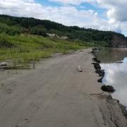 Yukon River, Alaska Photo: Edda Mutter