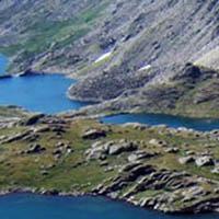 Niwot Ridge Ecological Research