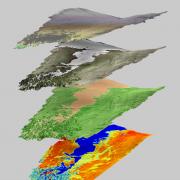Terrain map of Niwot Ridge Saddle catchment
