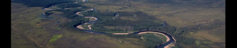 Arctic and Boreal Biogeochemistry and Hydrology