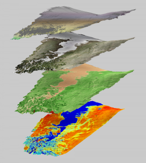 Terrain map of Niwot Ridge Saddle catchment