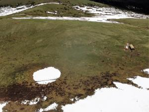 Niwot Ridge saddle catchment site view from drone