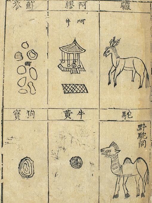 Asian medical woodcut.