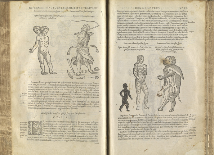 Image of abnormal births in early modern book.