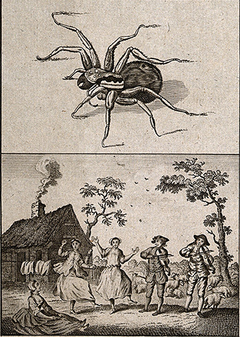 V0016627 People dancing and playing music as an antidote to a tarantu Credit: Wellcome Library, London. Wellcome Images images@wellcome.ac.uk http://wellcomeimages.org People dancing and playing music as an antidote to a tarantula bite. Etching. Published: - Copyrighted work available under Creative Commons Attribution only licence CC BY 4.0 http://creativecommons.org/licenses/by/4.0/