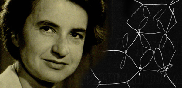 a study on the contributions of rosalind franklin maurice wilkins james watson francis crick and lin Scientist rosalind franklin's work paved the way for the discovery of the structure   studying dna structure with x-ray diffraction, franklin and her  franklin had a  personality conflict with colleague maurice wilkins, one  watson, who was  working on his own dna model with francis crick at cambridge.