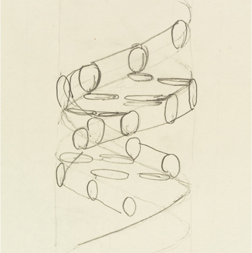 Sketch of the DNA double helix by Francis Crick Credit: Wellcome Library, London. Wellcome Images images@wellcome.ac.uk http://wellcomeimages.org Pencil sketch of the DNA double helix by Francis Crick. It shows a right-handed helix and the nucleotides of the two anti-parallel strands. Pencil drawing 1953 By: Francis Harry Compton CrickCrick papers Published: - Copyrighted work available under Creative Commons Attribution only licence CC BY 4.0 http://creativecommons.org/licenses/by/4.0/