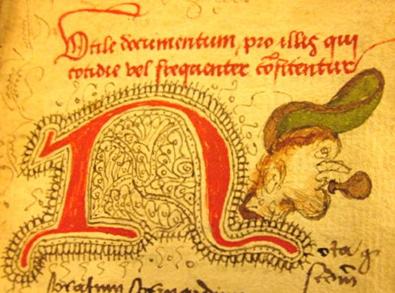 Drawing of man's head in herbal.