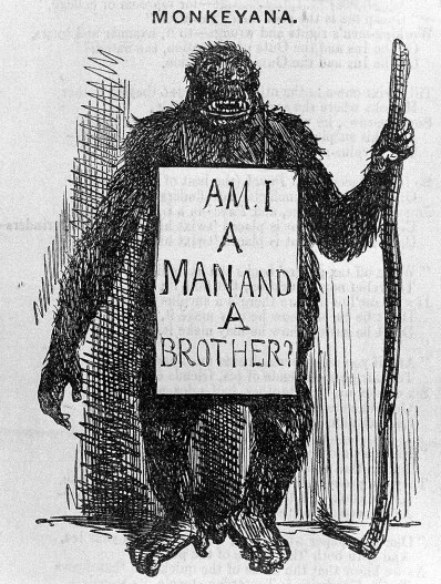 Punch, 18 May 1861, p.206 Satirical cartoon 'Monkeyana'. WI reference no. L0031419