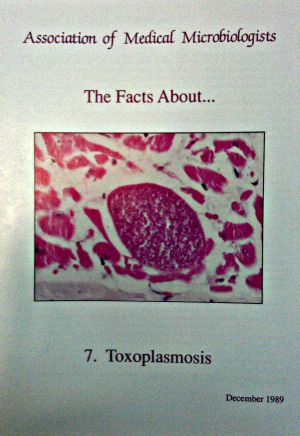 toxoplasmosis leaflet