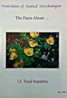 Viral helpatitis leaflet