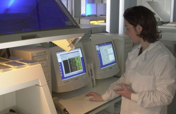 sequencing on the human genome project