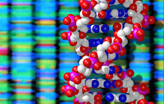 DNA double helix and sequencing output