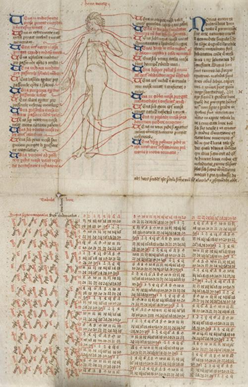 image of a 'vein man' in a medieval almanac