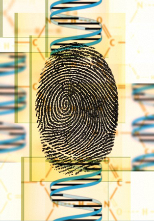 Artwork showing a DNA double helix with  a fingerprint. Wellcome Images B0003919