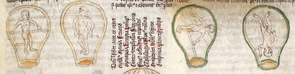 Birth figures in Wellcome ms. 49.