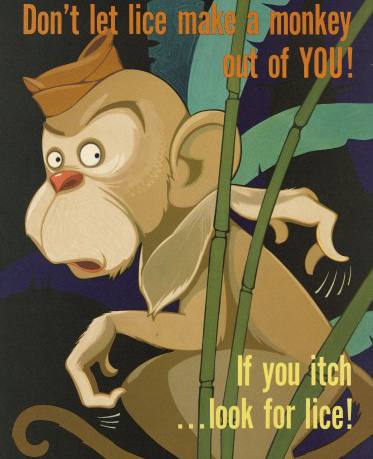 poster of a monkey with lice