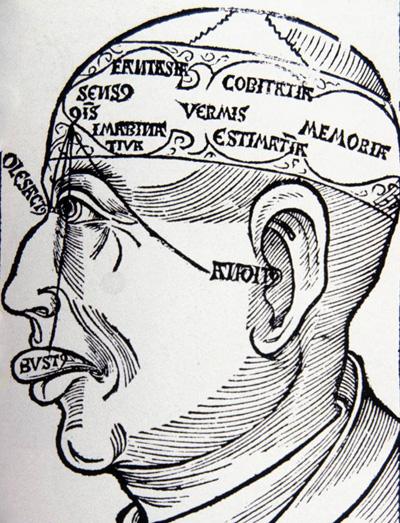 The cell doctrine of brain anatomy. Hieronymus Brunschwig