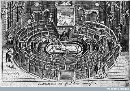Anatomical theatre