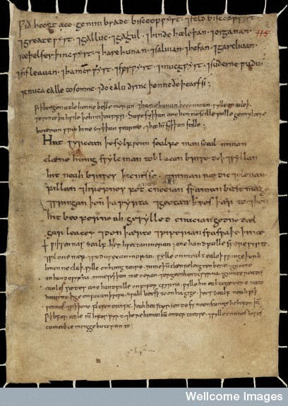 L0067134 Anglo-Saxon Medical Manuscript