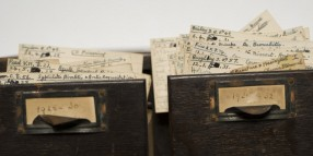 Photograph of Spilsbury's index cards in the original wooden cabinet