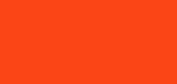 YWCA Evanston/North Shore logo