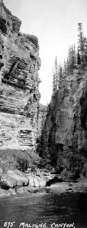 Canyon de la rivière Maligne