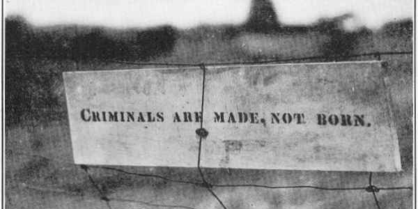 Criminals are made, not born