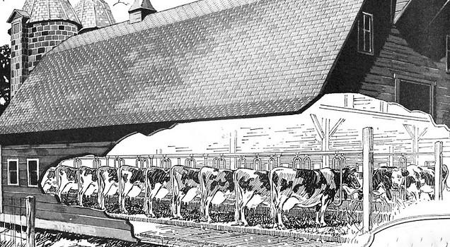 Photo of 1922 milk barn