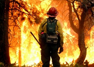 Fire suppression.  Aviation, infrared cameras, preventative logging, and early-warning systems have allowed forest managers to suppress the routine fires that historically cleared the underbrush needles and scrub vegetation that fuels catastrophic fires. False confidence has moved cabins into forest.  Fires burn hotter than ever before.
