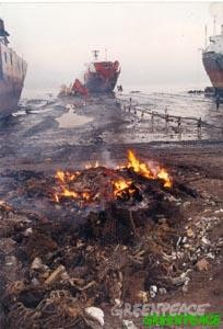 A burning cocktail of chemicals amidst ships in Alang