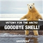 Shell's retreat from Canadian Arctic creates space for Arctic protection