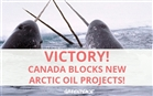 You did it! Big win for the Arctic