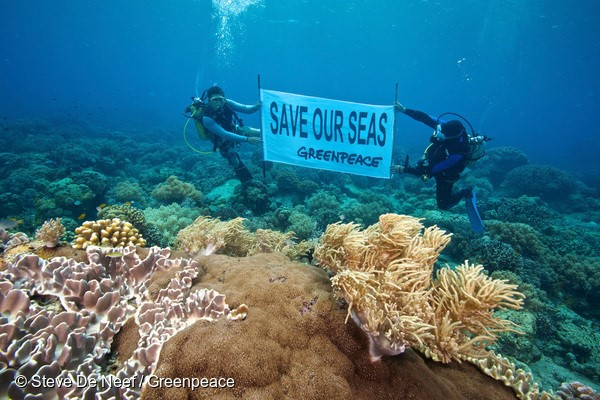 "Divers from Greenpeace together with scientists from Silliman University, a community members from Apo Island, Marine Protected Area Management Board, dive wardens of Apo Island unfurled banners with a message to ""Save our Seas"" in Apo Island, Dauin Negros Oriental. The Marine Protected Area (MPA) of Apo Island was destroyed caused by Typhoon Pablo in December 2012. An increase in the severity of extreme weather events is one of the predicted effects of climate change.  The documentation of the reef check in Apo Island is part of the activities around the visit of the Greenpeace ship Esperanza which arrived in the Philippines."""