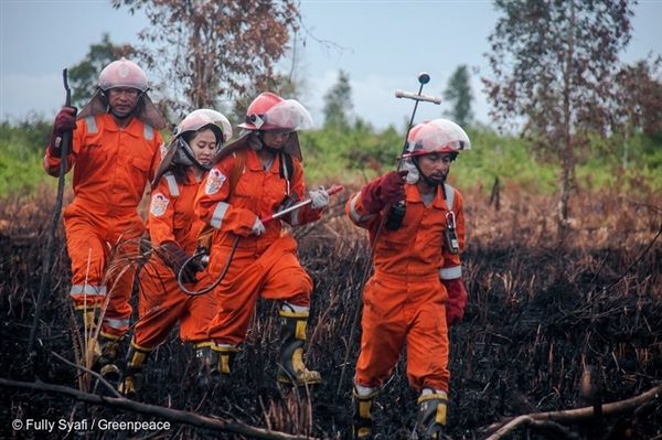 FFP Team in a mopping activity in West Kalimantan.