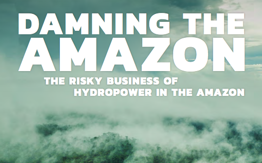 Rapporten Damning the Amazon