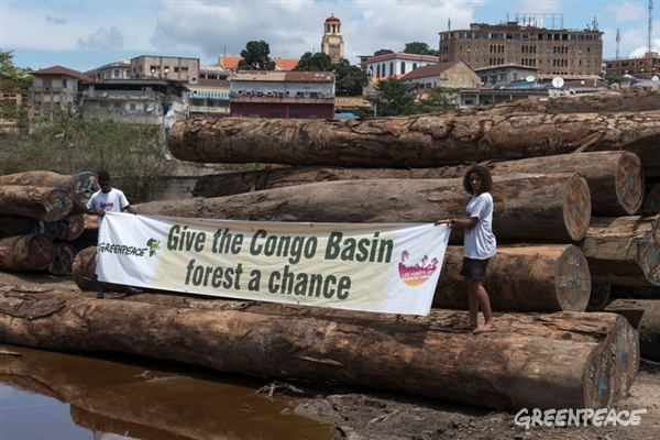 "Banner ""Give the Congo Basin forest a chance"""