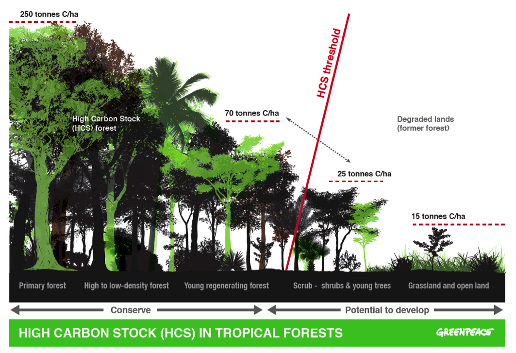 High Carbon Stock (HCS) in Tropical Forests