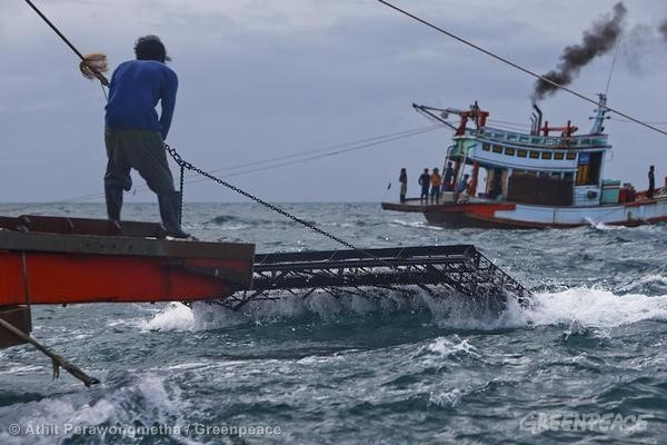 Destructive Fishing Methods in the Gulf of Thailand. 06/17/2013 © Athit Perawongmetha / Greenpeace