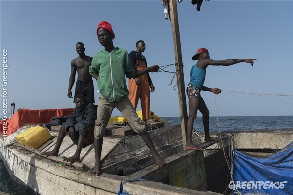 pêcheurs artisans en guinée conakry