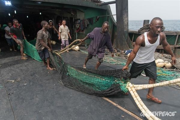 inspection de filets de pêches non conformes