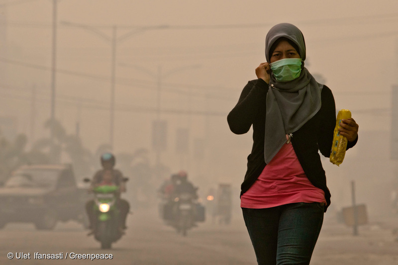 A woman wearing mask as haze hit on June 23, 2013, in Dumai, Riau Province, Indonesia. The fires that burn Indonesia's Sumatra island are a reminder that the destruction of Indonesia's forests is an international problem, and urging immediately action from government as the haze shrouded neighboring Singapore and Malaysia.N 01.67026° - E  101.44221°