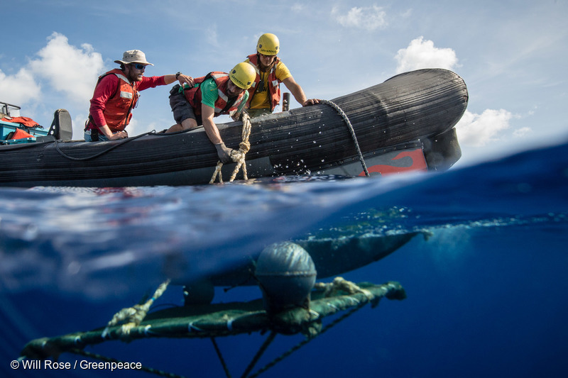 A recovery team head out in a rhib to retrieve a FAD from the ocean.The Greenpeace ship Esperanza recovers the 6th FAD on an expedition in the Indian Ocean to peacefully tackle unsustainable fishing. The marine snare had recently placed by a Spanish vessel supplying Thai Union. With some tuna stocks in the Indian Ocean, such as Yellowfin, on the brink of collapse due to overfishing, the expedition is exposing destructive fishing methods which contribute to overfishing and harm a range of marine life including sharks and juvenile tuna.