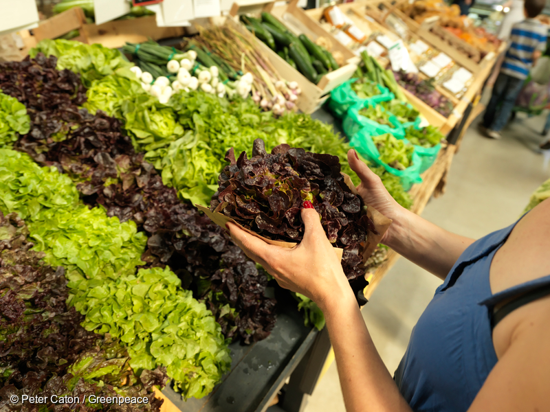 Customers at Super Halle supermarket.Opening only a year ago, Super Halle is a new supermarket that only stocks organic food. The local organic producers volunteer half a day every week to work in the supermarket and in return they are able to sell directly to the customers.