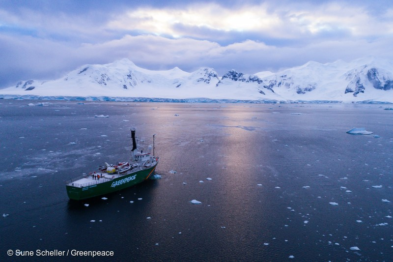 A snow covered Arctic Sunrise coming into an ice filled Paradise Bay, Antarctic. Greenpeace is documenting the Antarctic's unique wildlife, to strengthen the proposal to create the largest protected area on the planet, an Antarctic Ocean Sanctuary.