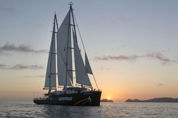 The new Rainbow Warrior at dawn in Matauri Bay on her first visit to New Zealand
