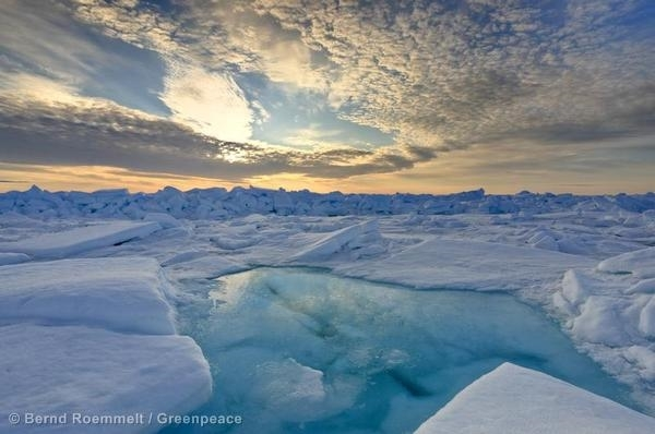 Pack ice melting in the middle of June. Begin of the Arctic summer. © Bernd Roemmelt / Greenpeace