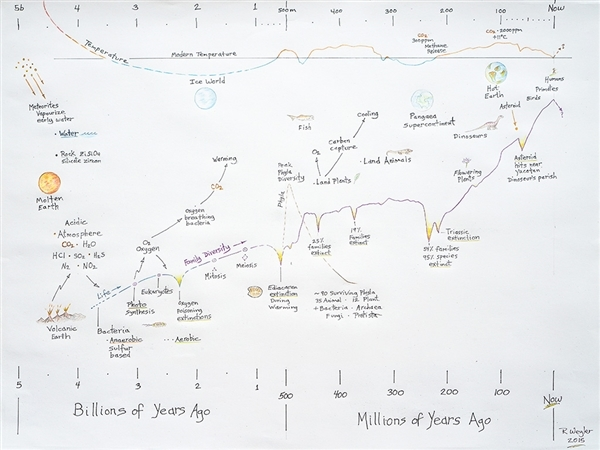 Earth history, diversity curve, and extinction events, drawing by Rex Weyler.
